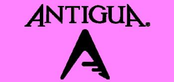 Antigua Group, Inc. logo