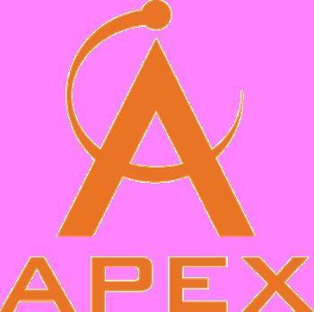 Apex Information Technologies logo